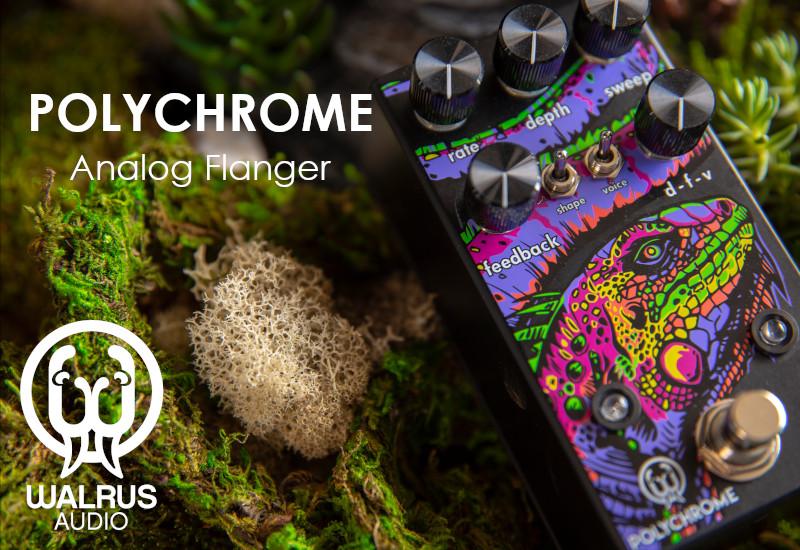 Walrus Audio Polychrome – Analoger Flanger aus Oklahoma City