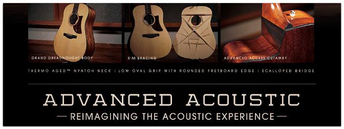 Ibanez Advanced Acoustic Serie