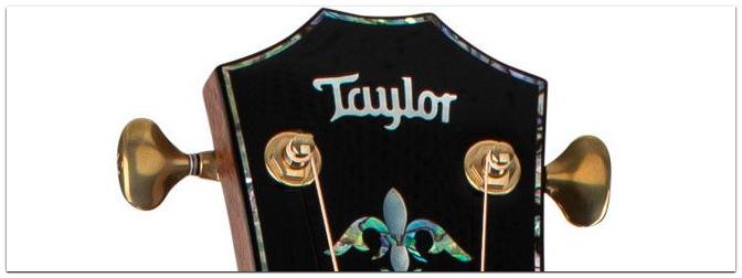 NAMM Show 2021 – Die neue Taylor PS14ce Honduran Rosewood Presentation-Serie