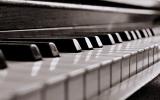 Fit für Bühne und Studio - auf die richtige Klaviatur kommt es an!