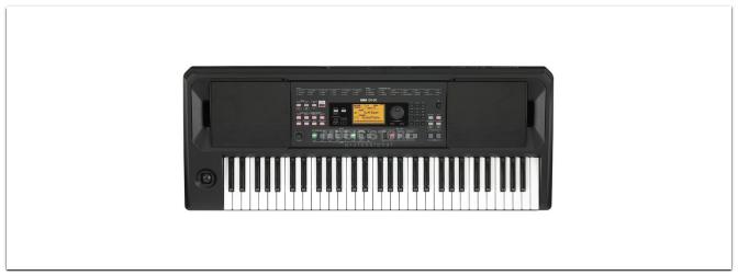 Das neue Korg EK-50 Entertainer Keyboard ist ab Oktober erhätlich!