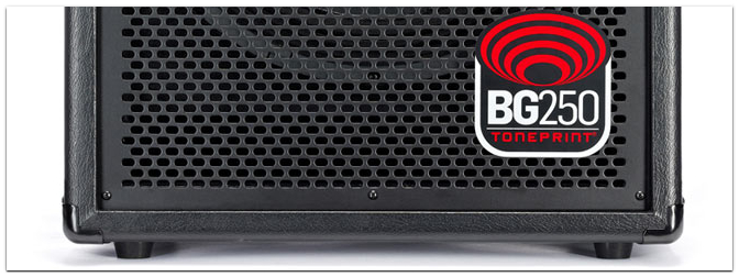 TC Electronic BG250 Bass-Combo