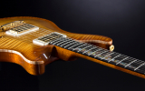 Vermisst: PRS Custom 22 Private Stock Skyline Cologne
